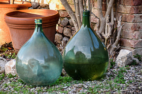 glass jars in sienna